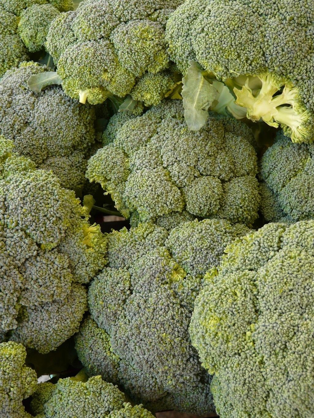 Idee bureau de wit voedselveiligheid lees meer over bureau de wit op www bureaudewit nl